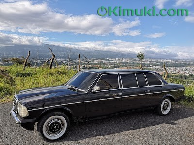 HEREDIA-MOUNTAINS-COSTA-RICA.-MERCEDES-W123-300D-LIMO.jpg